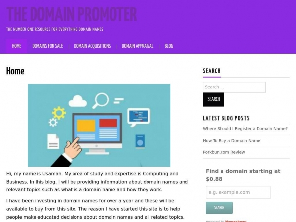 thedomainpromoter.com
